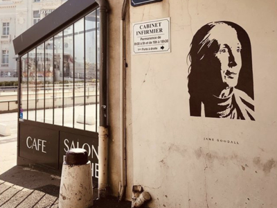 Jane Goodall by Fox in Trouville